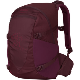 Bergans Birkebeiner 22 Backpack Youth, zinfandel red/beet red